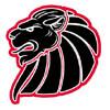 Braunschweig New Yorker Lions
